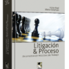 Litigación y proceso en la nueva ley procesal del trabajo